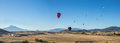 Hot air balloons over fields with Mt. Shasta