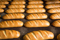 Hot baked breads on a line fresh bread loafs the production Royalty Free Stock Image