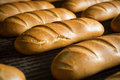 Hot baked breads on a line fresh bread loafs the production Stock Photos