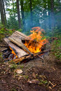Hot campfire Royalty Free Stock Photography