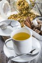 Hot chamomile tea made of wild flowers Royalty Free Stock Photo