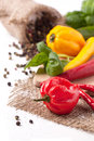 Hot chili peppers with basil red and yellow salt and fresh over white Stock Images