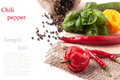 Hot chili peppers with basil red and yellow salt and fresh over white sample text Stock Photos