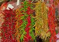 Hot chili peppers at the market Stock Images