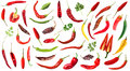 Hot chili peppers on white background Royalty Free Stock Photo