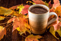Hot Chocolate in the Fall Royalty Free Stock Photo
