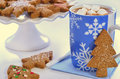 Hot chocolate and ginger cookies with marshmallows tree shape gingerbread Stock Photography