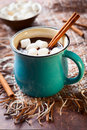 Hot chocolate with marshmallows and cinnamon stick Royalty Free Stock Photos