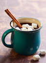 Hot chocolate with marshmallows and cinnamon stick Stock Photography