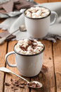 Hot chocolate with marshmallows in two enamel tin mugs freshly Stock Photography