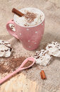 Hot cocoa drink with cream cinnamon and creame for winter days Stock Photos