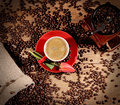 Hot coffee and coffee beans on the background of coffee grinders tulip. Royalty Free Stock Photo