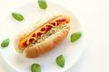 Hot dog with basil on white plate Royalty Free Stock Images