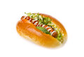 Hot dog Bread Stock Image
