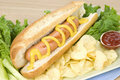 Hot dog and potato chips Royalty Free Stock Photo