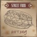 Hot dog sketch on grunge background.