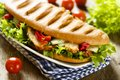 Grilled sandwich with chicken, green salad and vegetables Royalty Free Stock Photo