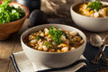 Hot Homemade White Bean Chicken Chili Royalty Free Stock Photo