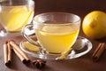 Hot lemon ginger cinnamon tea in glass cup Royalty Free Stock Photo