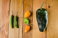 Hot peppers collection Royalty Free Stock Photo