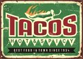 Hot and spicy tacos advertise Royalty Free Stock Photo
