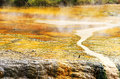 Hot spring natural and yellow stone in the national park rotorua north island new zealand Stock Images