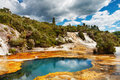 Hot spring, New Zealand Stock Photography