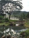 Hot spring in the valley Stock Image