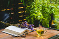 Hot tea in a cup with open book and reading glasses with dried f Royalty Free Stock Photo