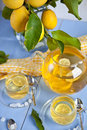 Hot tea with lemons Stock Images