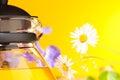 Hot teapot close up Royalty Free Stock Image