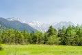 Hotaka mountain range and green field in spring at kamikochi nagano japan Royalty Free Stock Photo