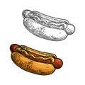 Hotdog. Isolated on white background.