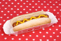 Hotdog with mustard in patriotic tablecloth a cooked on a Royalty Free Stock Images