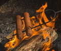 Hotdogs cooking over campfire two on a roasting fork a Stock Photo