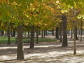 Hotspot park trees in autumn Stock Image