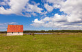 House and cows on gotland countryside in sweden a green field the coastline in the background Royalty Free Stock Images