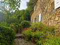 House and garden in Provence Royalty Free Stock Photo