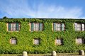House With Ivy