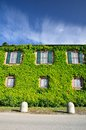 House with ivy Royalty Free Stock Photo