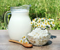House milk and cottage cheese Royalty Free Stock Photography