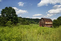 House In Nature-best Quality P...