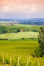 House near vineyard in Tuscany landscape, Italy Royalty Free Stock Photo
