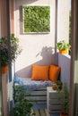 House plants on the balcony Royalty Free Stock Photo