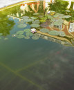 House reflected in water . Stock Photos