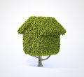 House shaped tree Stock Photography