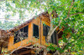 House on the tree in the phi phi island. It is hotel. Royalty Free Stock Photo