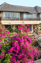 House in tropics two storey with flowering plants front Stock Image