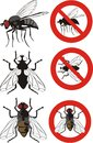 Housefly - warning signs Stock Photo