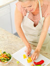 Housewife preparing salad in the kitchen Stock Images